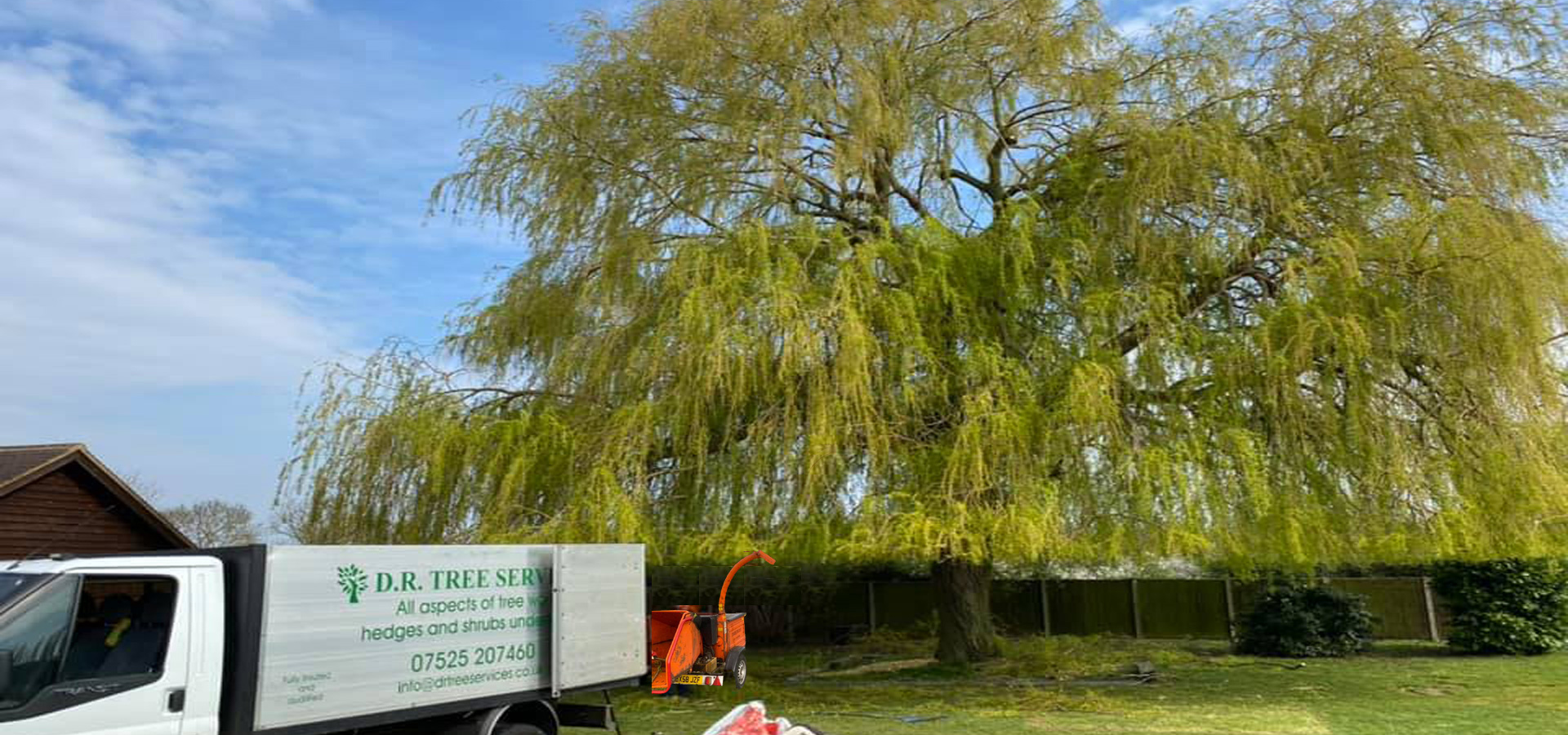 tree services theydon bois